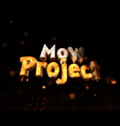 MoW-Project